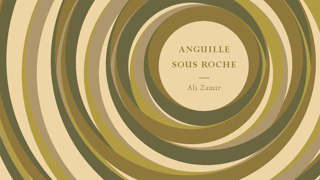 anguille-sous-roche-par-ali-zamir-le-tripode-320p-19eu_5708615